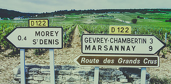 The Finest Burgundy Wineries